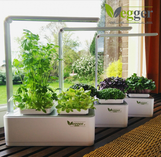 Vegger kruiden - Smart Indoor Garden