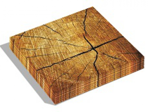 Dutch design servet treetrunk 33x33 cm.
